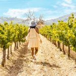 woman with hat in the vineyard Valensole Provence Landscape France